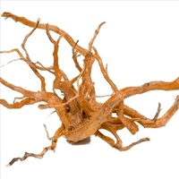 Gold Vine Spider Wood Small 35-50Cm Aquarium & Reptile Driftwood Spiderwood Goldvine