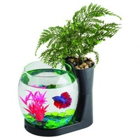 Blue Planet Betta Planter Black 2.8L