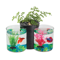 BLUE PLANET BETTA TWIN PLANTER BLACK 2L