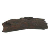 Petworx M Catfish Log 21X5X5Cm Cave Hole Trunk